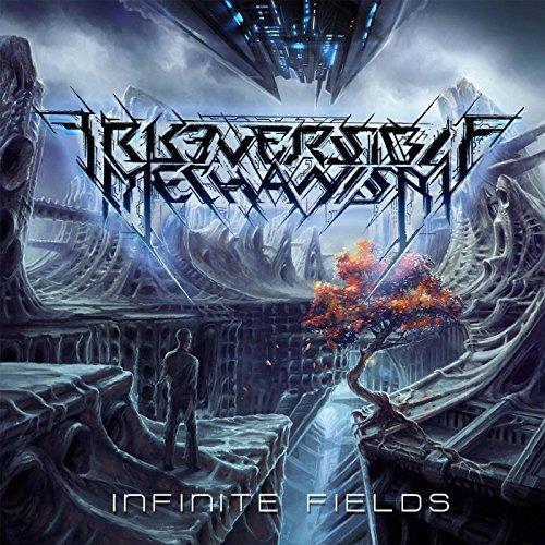 Irreversible Mechanism -- Infinite Fields