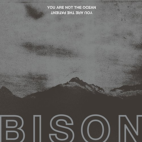 Bison -- You Are Not The Ocean You Are The Patient
