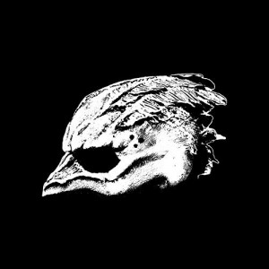 Legend Of The Seagullmen -- Legend Of The Seagullmen