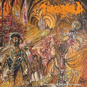 Tomb Mold -- Manor of Infinite Forms