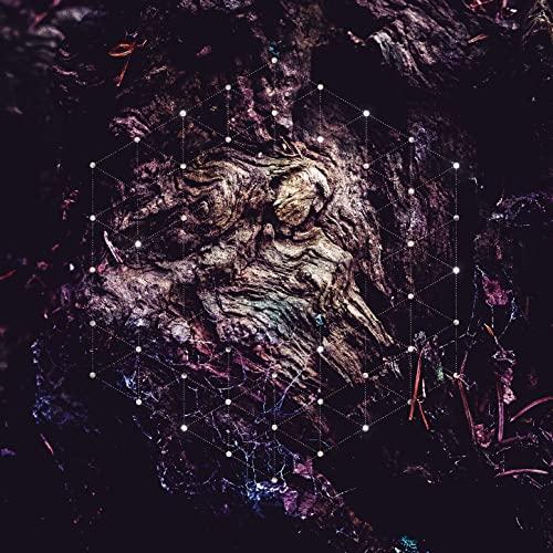 Psychonaut -- Unfold The God Man
